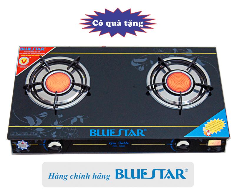 Bếp ga hồng ngoại Bluestar ng-5980c.jpg