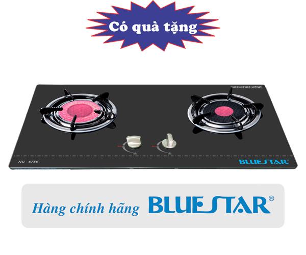 Bếp ga âm hồng ngoại Bluestar ng-6750c.jpg