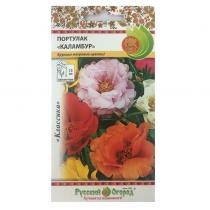 Hạt giống hoa mười giờ - 703313