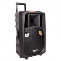 Loa Hát Karaoke Di Động Temeisheng DP-2398