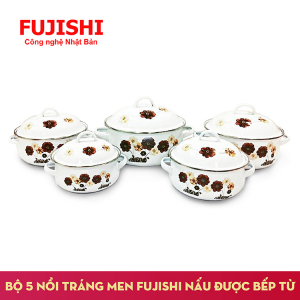 Bộ 5 Nồi tráng men cao cấp Fujishi FJ-501A, Nấu được bếp từ