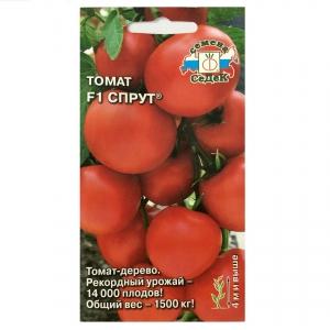 Hạt giống cà chua giàn F1 - 32592