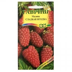 Hạt giống mâm xôi đỏ (Phúc Bồn Tử) - 27304