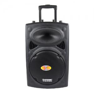 Loa Hát Karaoke Di Động Temeisheng DP-107