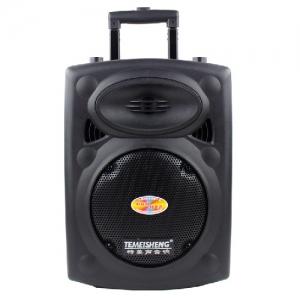 Loa Hát Karaoke Di Động Temeisheng DP-131