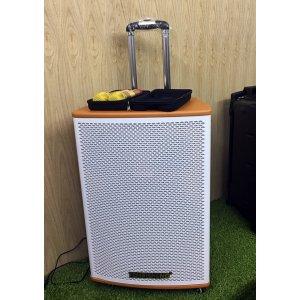 Loa vali kéo di động Bluetooth Karaoke TEMEISHENG GD15-02