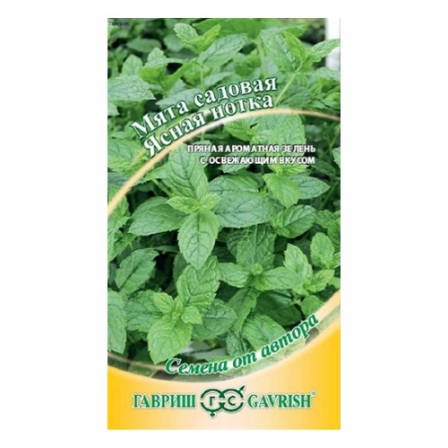 Hạt giống Bạc Hà Peppermint - 27563