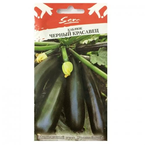 Hạt giống bí ngòi xanh - 319036