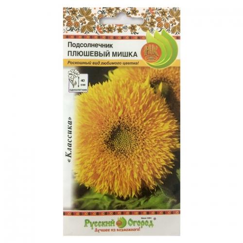 Hạt giống hoa hướng dương kép mini - 703304