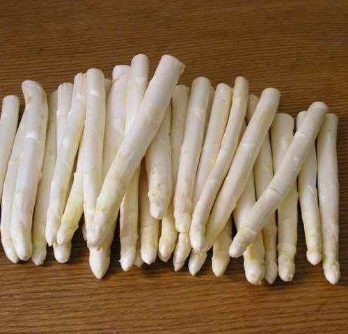 Hạt giống măng tây trắng - 307301-2
