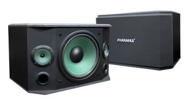Loa Paramax P-509