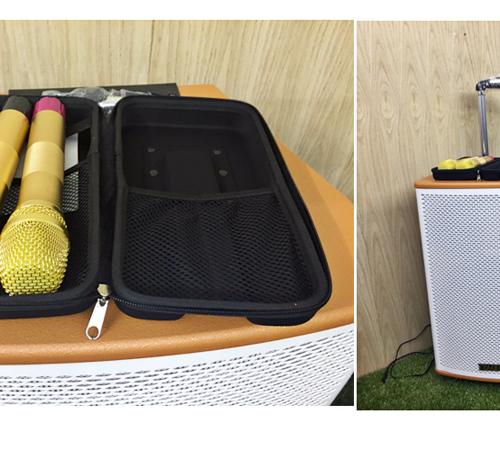 Loa vali kéo di động Bluetooth Karaoke TEMEISHENG GD15-02-4