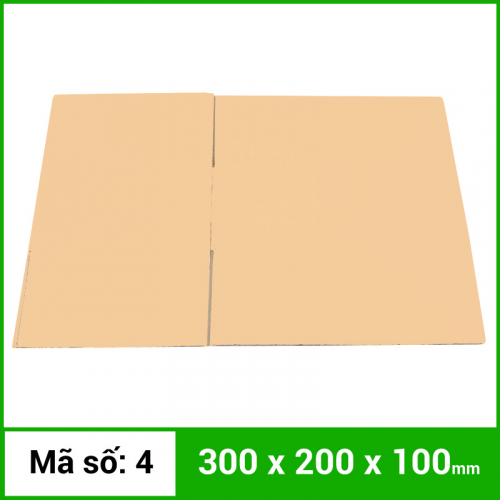 Thùng Carton gói hàng kích thước 300x200x100mm không in-1