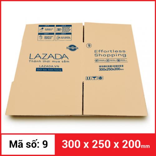 Thùng Carton gói hàng kích thước 300x250x200mm-1