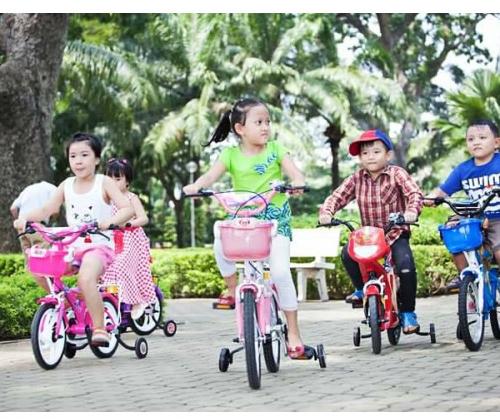 Xe đạp trẻ em 2 bánh Nhựa Chợ Lớn 12 INCH 73   M1395-X2B-4