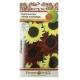 Hạt giống hoa hướng dương hỗn hợp - 703306-1
