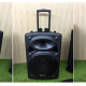 Loa vali kéo di động Bluetooth Karaoke TEMEISHENG DP-2305L-3