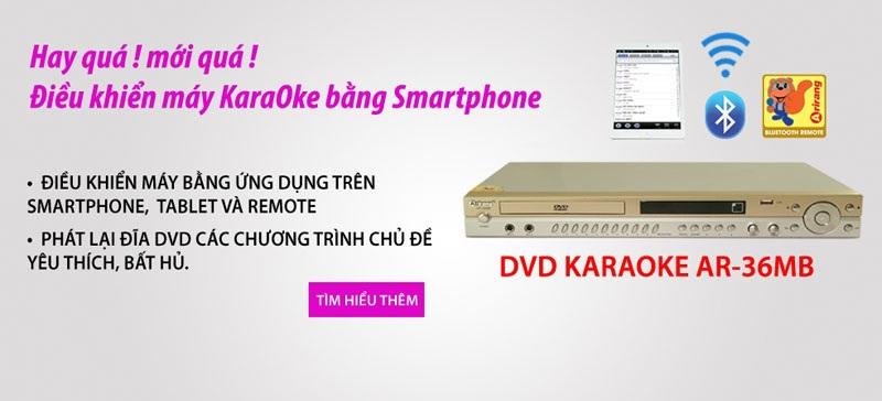 Mua Đầu DVD Karaoke Arirang AR-36MB