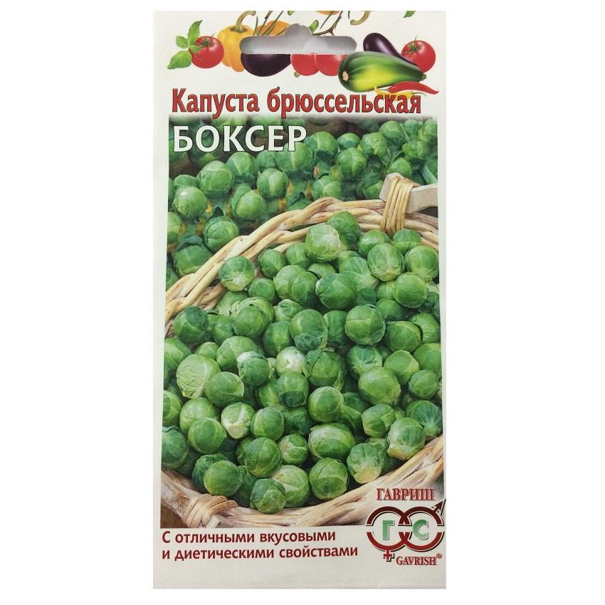 Hạt giống bắp cải mini xanh Brussels