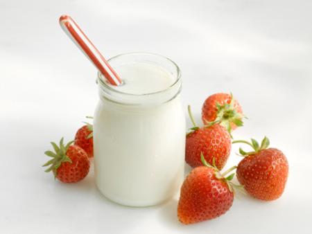 Máy làm sữa chua Argo AYM-201