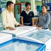 Hướng dẫn sử dụng và bảo quản tủ đông, tủ mát, Xử lý những hư hỏng thường gặp ở tủ đông