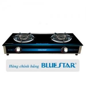 Bếp gas đôi Bluestar NG-5950HP