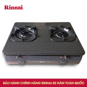Bếp gas 6 tấc Rinnai RV-4680G, Chén đồng đánh lửa IC
