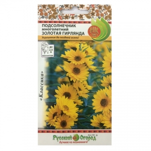 Hạt giống hoa hướng dương vòng hoa - 703308