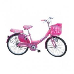 Xe đạp người lớn - 24 inch - M838-X2B (Bánh Căm Kittin)