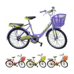 Xe đạp trẻ em - 20 inch - M903-X2B (Số 28 - Bánh Căm Happy)