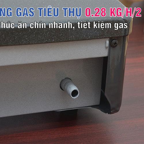 Bếp gas 6 tấc Rinnai RV-360GM, Chén gang đúc-5