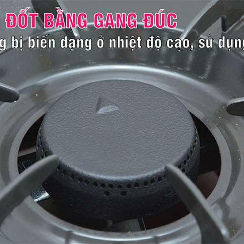 Bếp gas 6 tấc Rinnai RV-360GM, Chén gang đúc-3