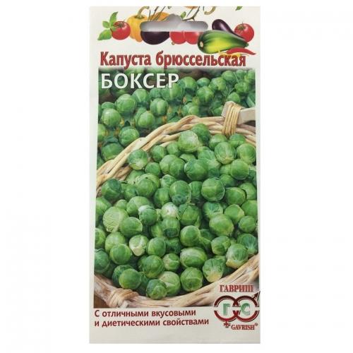 Hạt giống bắp cải mini xanh Brussels - 02388