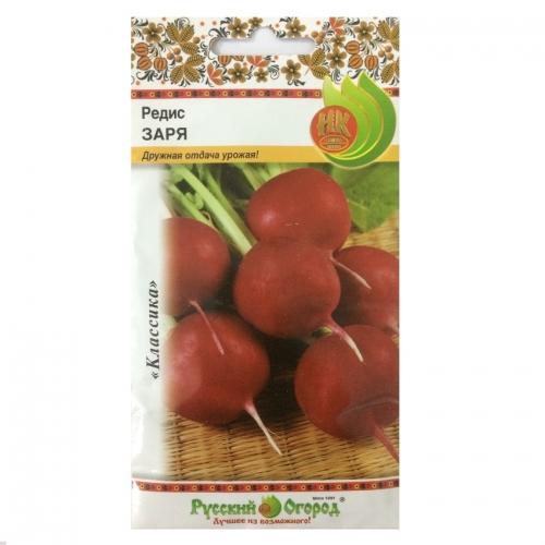 Hạt giống củ cải đỏ mini - 303216
