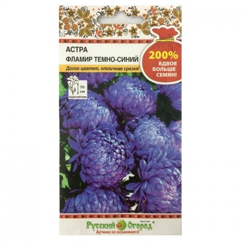 Hạt giống hoa cúc Astra hải quân - 711588-1